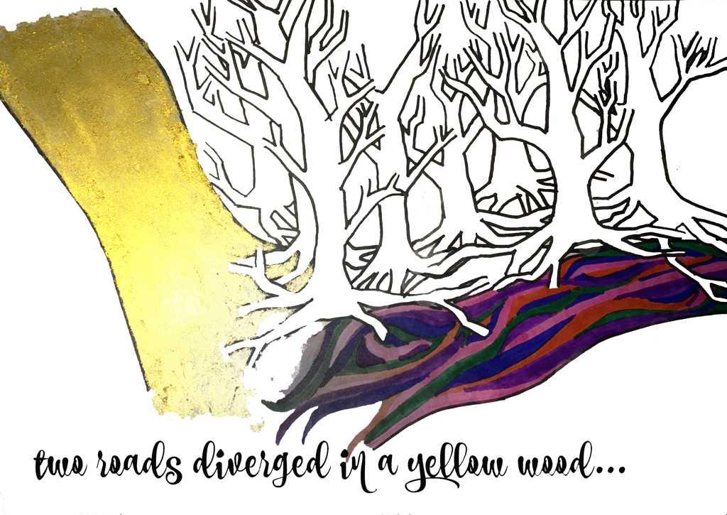 Cheyenne Cohen   Staff Illustrator
