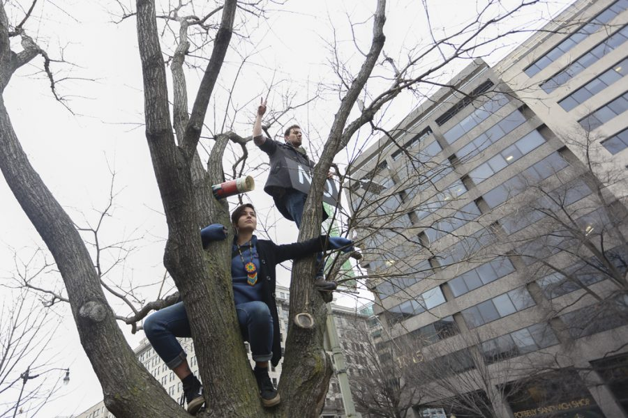People climb trees to watch an anti-Trump rally. Michael Moore spoke at the rally, among others. John Hamilton | Visual Editor