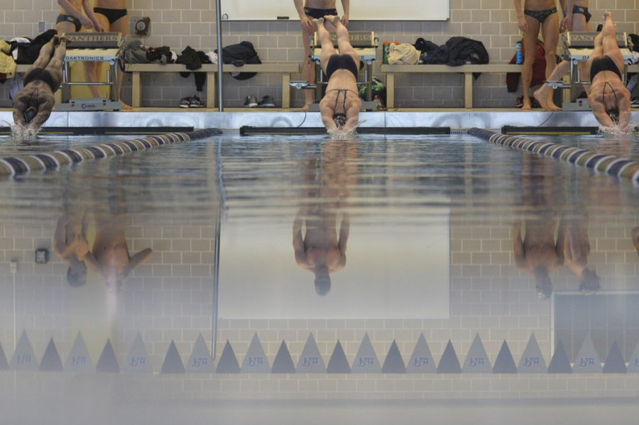 Swimmers dive in for the 50-yard freestyle in Saturday's meet against Florida State. Both Pitt's men's and women's teams lost to the top 25 ranked Florida State teams. John Hamilton|Visual Editor