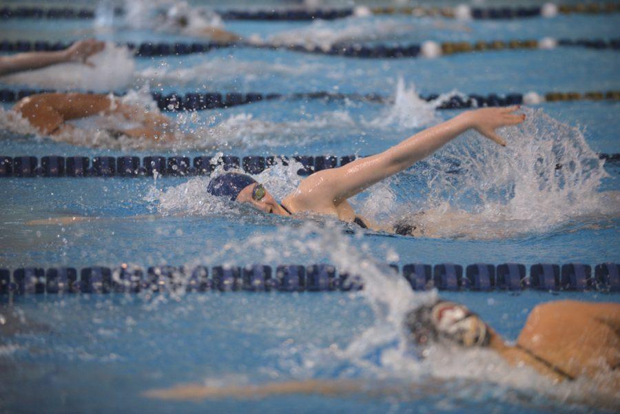 Women swim in the 500-yard freestyle. John Hamilton|Visual Editor