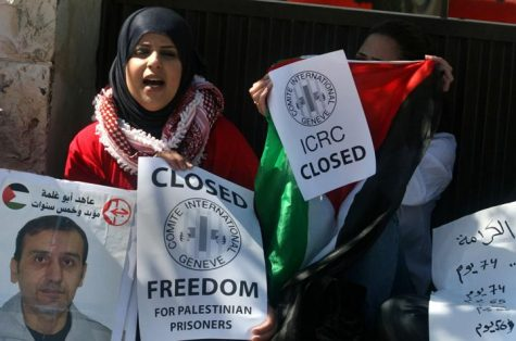 Palestinian hunger strike at Red Cross