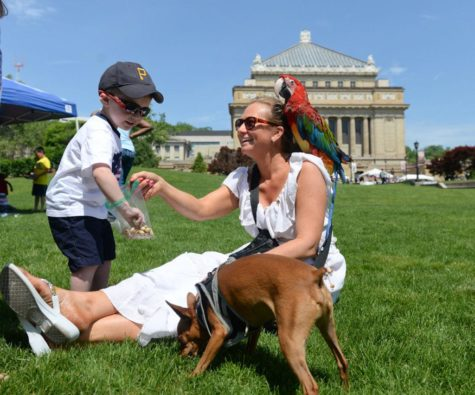Gallery: Soldiers & Sailors Memorial Day celebration 5/25/2015