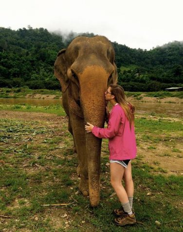 Training in Thailand: Allison Faust's internship abroad