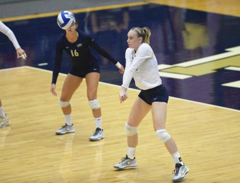 Pitt volleyball goes undefeated at UCSB Thunderdome Classic