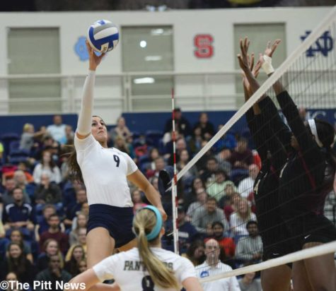 Pitt volleyball sets sights on home opener
