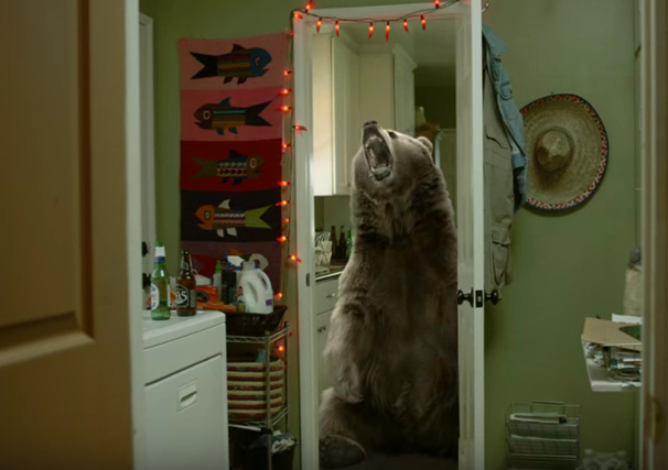 Scene+from+%22What+if+Bears+Killed+one+in+five+People%3F%22+PSA+from+College+Humor%2C+the+White+House+and+Generation+Progress.+