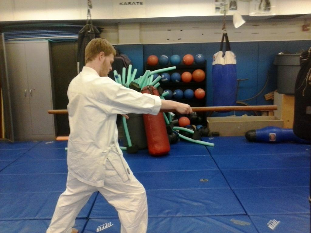 Pitt's East West Martial Arts Club practices in Trees Hall to improve their skills. Alexa Bakalarski, For The Pitt News