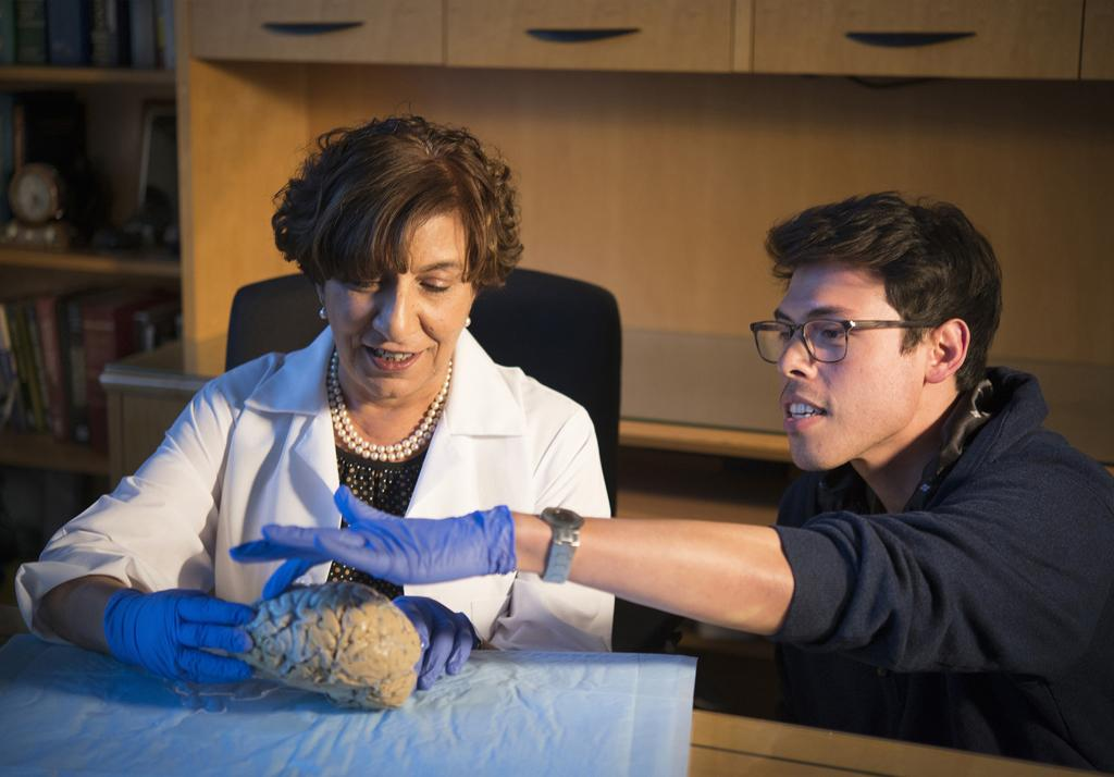 Dr. Claudia Kawas, who oversees The 90+ Study, and Ryan Bohannan, staff research associate, examine the brain of a normal 74-year-old woman at UCI.
