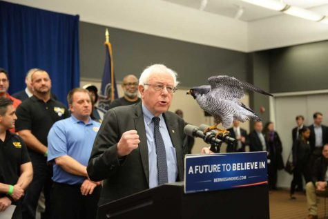 Theres no place like a Bernie rally