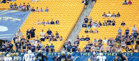 The Panthers Fan Experience Committee is hoping to fill up empty stands this season.