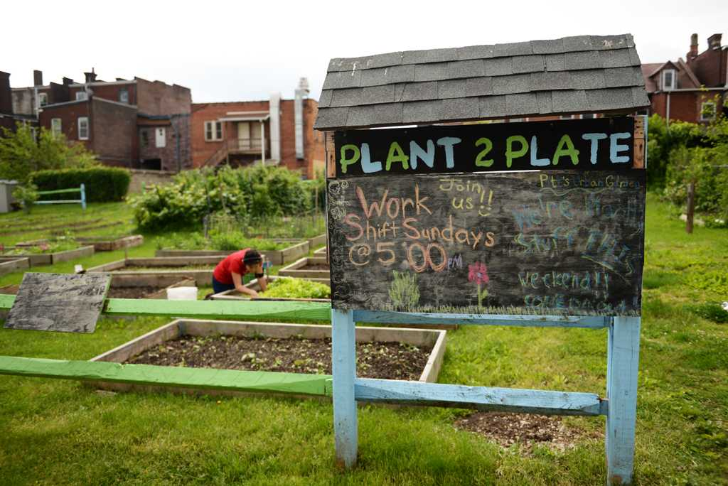 A volunteer tends to the community garden on Oakland Avenue. Alex Nally | Staff Photographer