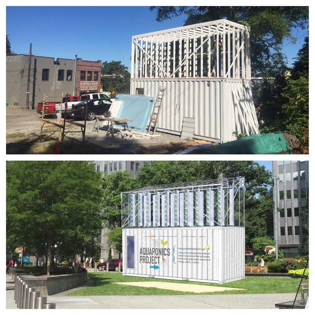 Pitt students Vinh Luong and Joe DiPietro built an urban farm using an aquaponics system.