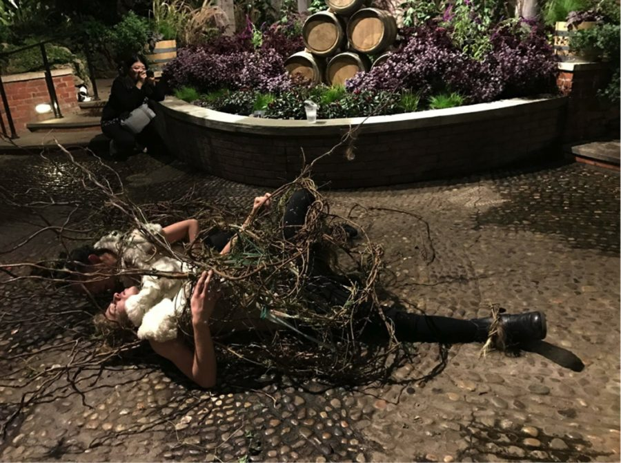 Performance+at+Phipps%2C+%22Vines+in+the+Stream%2C%22+two-person+wearable+made+of+vines+and+willow+tree+branches+%E2%80%94+investigation+of+our+collaboration+of+movements+within+the+constraints+of+the+braided+materials%0A%0A%E2%80%9CThis+piece+was+a+collaboration+between+me+and+a+Carnegie+Mellon+student+over+the+last+few+weeks+for+our+eco-art+class.+We+had+to+go+to+Phipps+and+create+a+piece+based+off+of+our+experience+in+the+space.%22