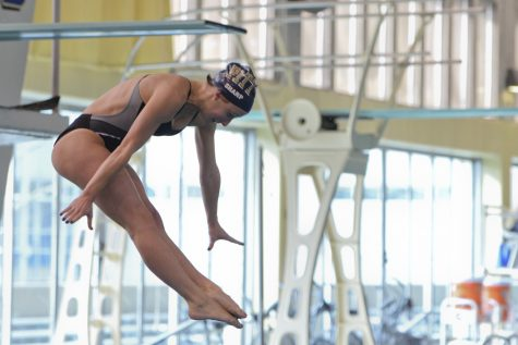 Pitt swimming and diving trounced by Notre Dame and Virginia Tech