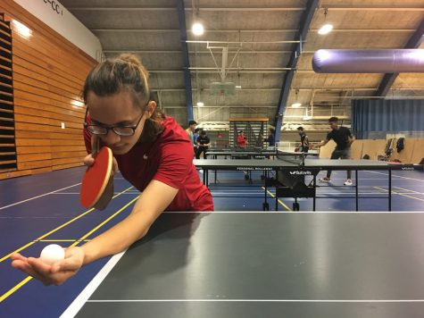 Paddle masters: Pitt Ping Pong Club serves up wins
