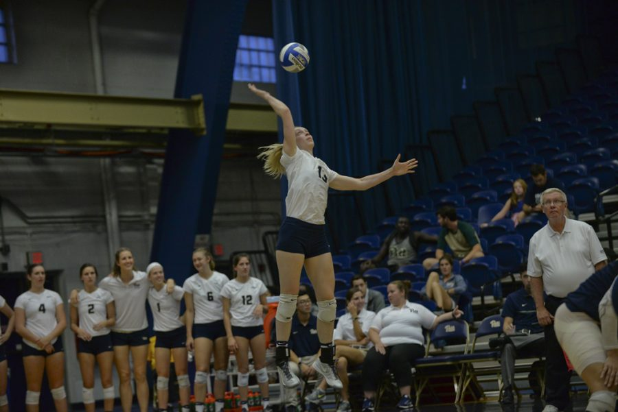 The+Pitt+volleyball+team+placed+six+players+on+the+2016+All-ACC+teams%2C+highlighted+by+first-team+members+Stephanie+Williams+%2813%29+and+Jenna+Potts.+Jeff+Ahearn+%7C+Senior+Staff+Photographer