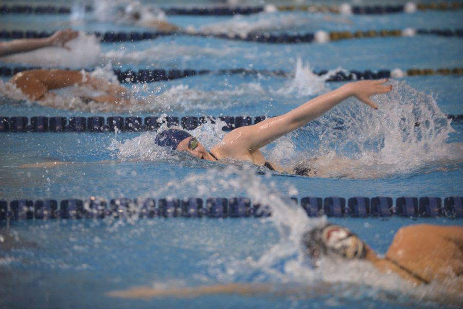 Women swim in the 500-yard freestyle. John Hamilton|Visual Editor
