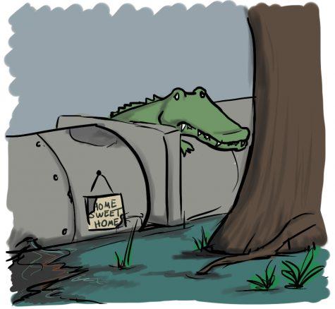 Meet Florida's DAPL: the Sabal Trail Pipeline