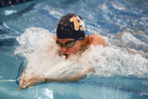 Panthers swim past local teams on Senior Day