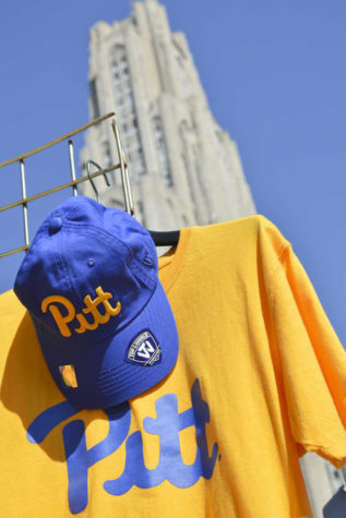 Pitt gets $5.5 million in first annual Day of Giving