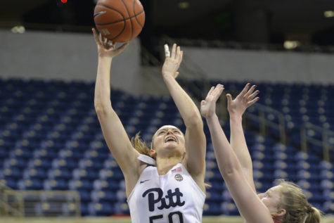 Pitt women's basketball team falls at No. 8 Florida State, 79-48