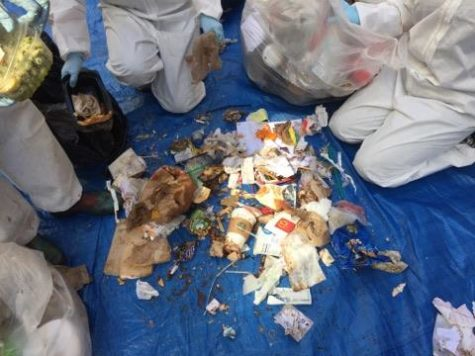 Pitt wraps up eighth RecycleMania