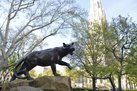 Top 10: Things We Learned This Year at Pitt