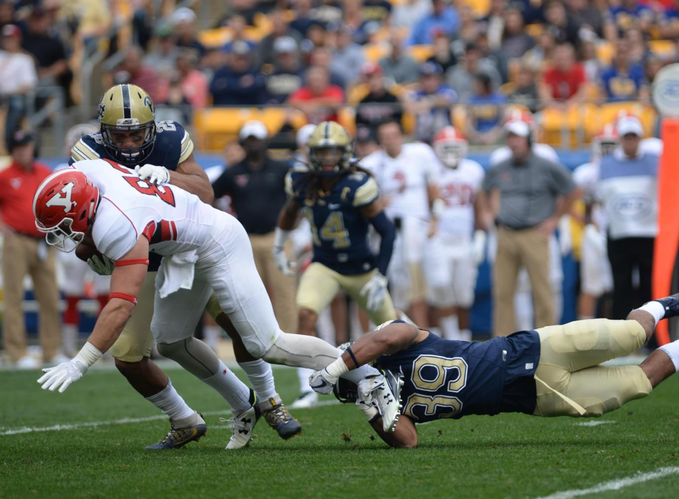 Pitt linebacker Saleem Brightwell (#39)  and Elijah Zeise (#25) tackle YSU player in Saturday, Sept. 2, game against the Penguins. (Photo by Anna Bongardino | Assistant Visual Editor)