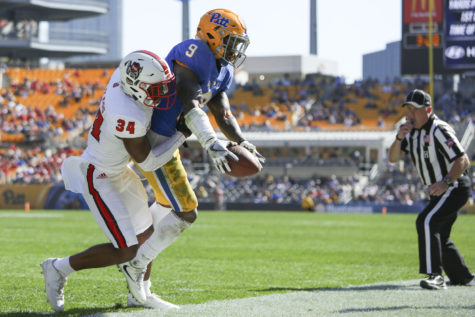 Gallery: NC State defeats Pitt, 35-17