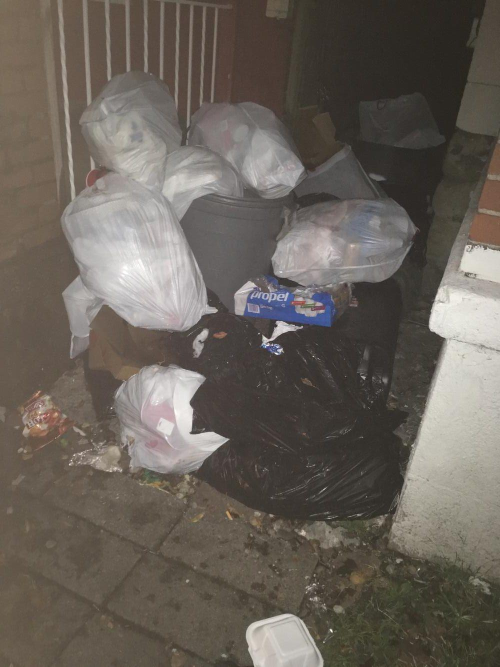 If you rely on your neighbors to take out your trash... You'll end up with a city citation. (Photo by Rachel Glasser | Contributing Editor)