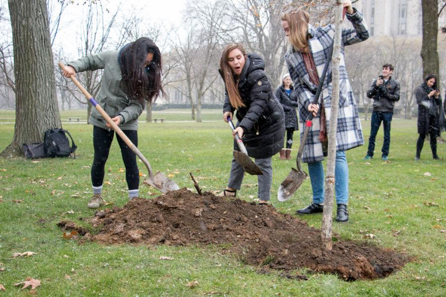 Chelsea Huddleston, Ellie Cadden and Madelyn Ferdock (left to right) plant a white oak tree on the Cathedral lawn to commemorate Pitt unveiling its new plan for sustainability. (Photo by Elise Lavallee | Contributing Editor)