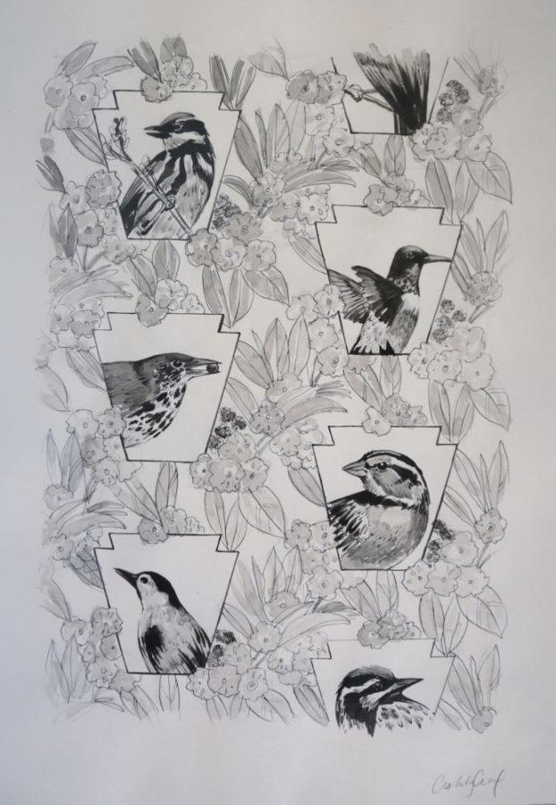 Ashley Cecil's work is intended to raise awareness about the issue of bird window collisions and offer a solution. Her window film, which is used to cover windows to prevent bird collisions, is sold in the Phipps Conservatory gift shop. (Photo by Chiara Rigaud | Staff Photographer)