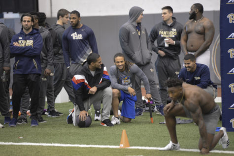 Panthers put on show for pro scouts