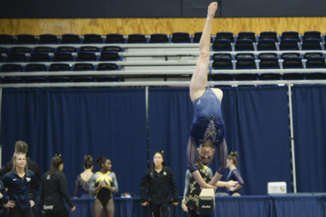 Pitt gymnastics sets the bar with record-breaking season