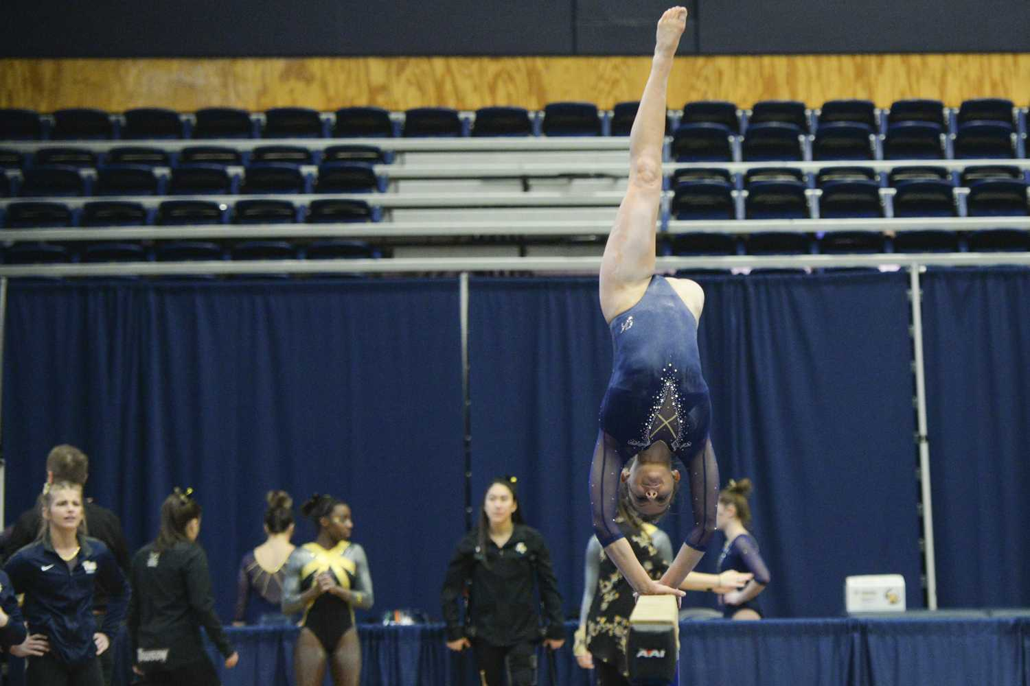 Catie Conrad, a senior, was the leading gymnast on bars for Pitt's gymnastics team this year. Pictured above is Conrad on beams. (Photo by John Hamilton | Managing Editor)