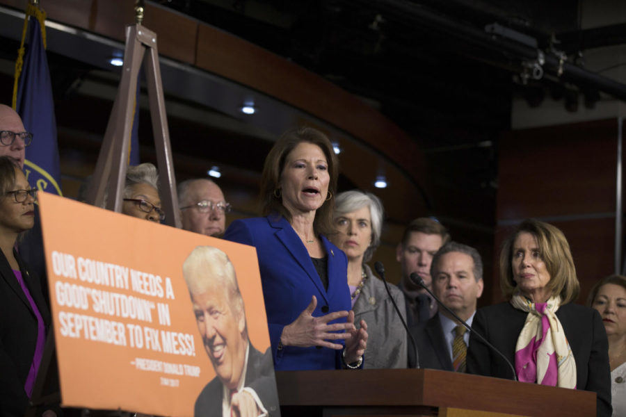 U.S.+Rep.+Cheri+Bustos+%28D-Ill.%29%2C+who+also+serves+as+the+Democratic+Policy+and+Communications+Committee+co-chair%2C+speaks+with+reporters+during+a+press+conference+held+by+U.S.+House+Democrats+on+January+20%2C+2018+at+the+U.S.+Capitol+on+the+first+morning+of+a+government+shutdown+in+Washington%2C+D.C.+%28Alex+Edelman%2FCNP%2FZuma+Press%2FTNS%29