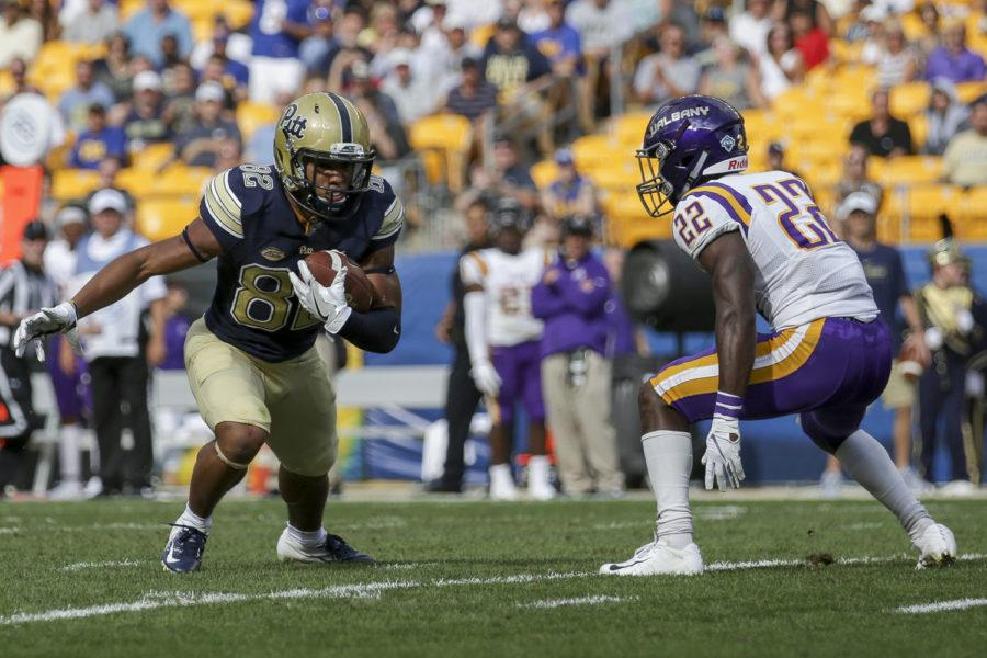 Redshirt+senior+wide+receiver+Rafael+Araujo-Lopes+scored+two+receiving+touchdowns+during+Pitt%E2%80%99s+season+opener+against+Albany.+%28Photo+by+Thomas+Yang+%7C+Assistant+Visual+Editor%29