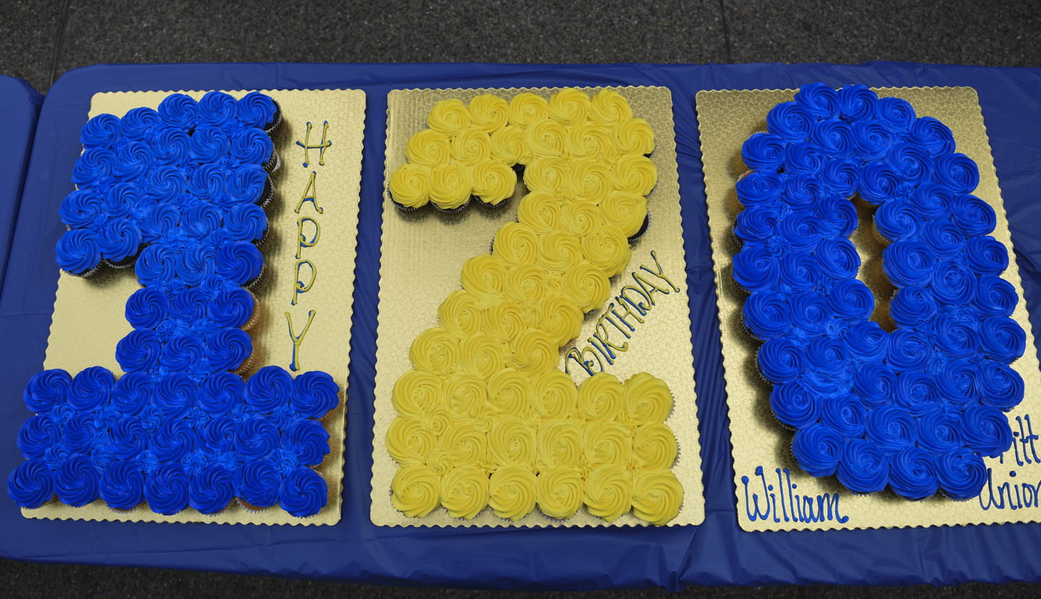 "Blue and gold cupcakes read ""120"" in honor of the building's 120th birthday hosted by William Pitt Union staff."
