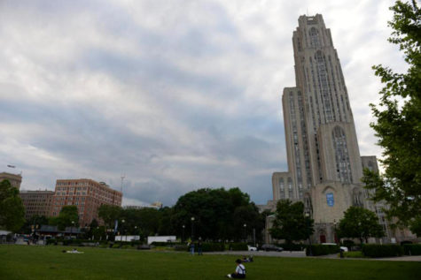 After Year of Sustainability, Pitt stays focused on being green