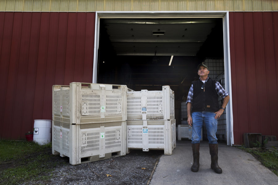 Larry Voll arrives at Soergel Orchards around 6:15 a.m. every morning to begin making cider.