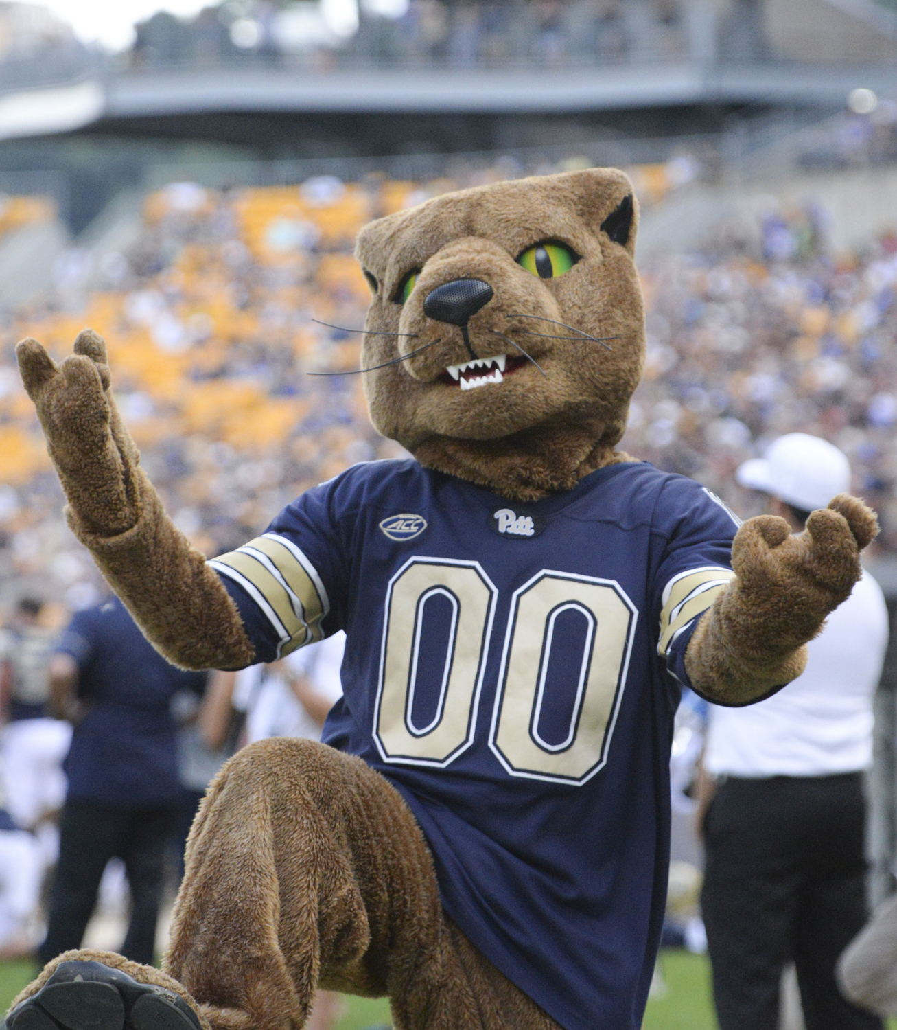 Panthers' mascot ROC dances on Heinz Field during Pitt's game against Georgia Tech Sept. 15, 2018.