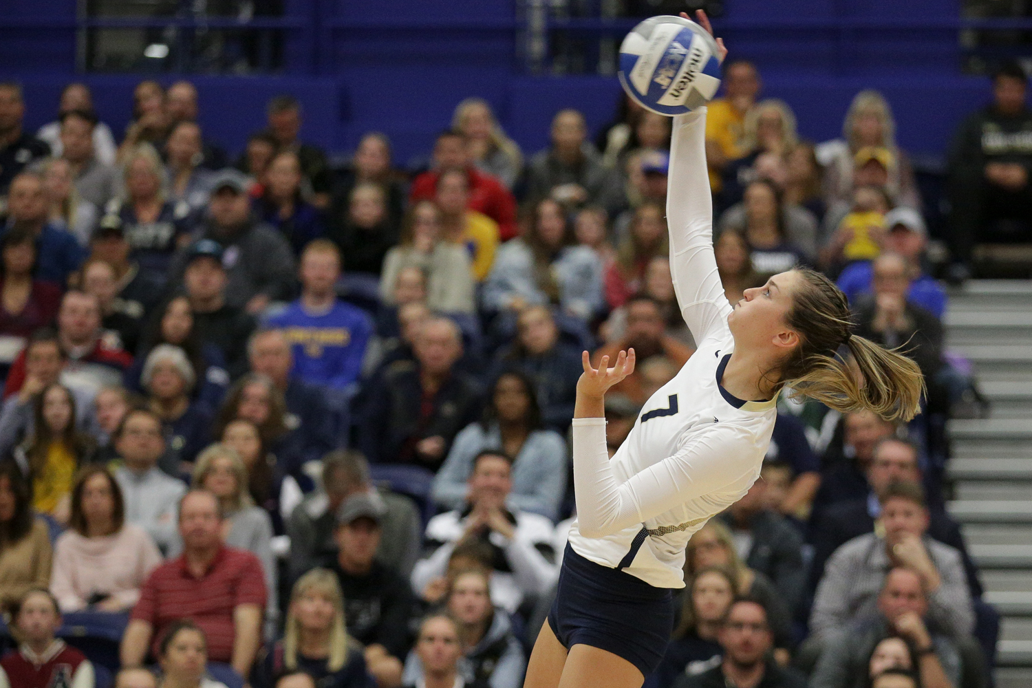 Junior middle hitter Layne Van Buskirk (7) attacks the ball during the second set of Pitt's 3-0 victory over Notre Dame Friday evening. (Photo by Thomas Yang | Assistant Visual Editor)