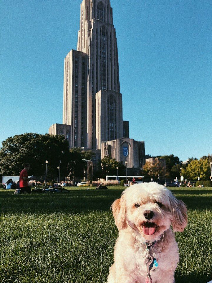 Sophomore studio arts major Ruth-Riley Collins poses her dog Rigsby for a photo on a sunny day in Schenley Plaza.