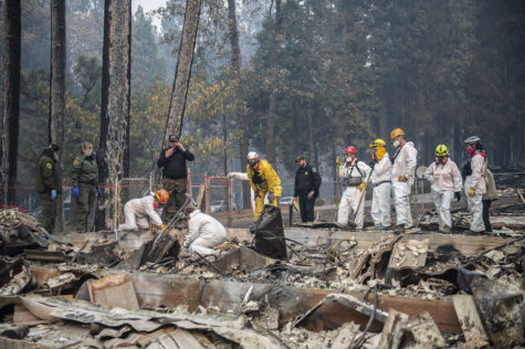 Editorial: Trump wrongly blames forest management for fires