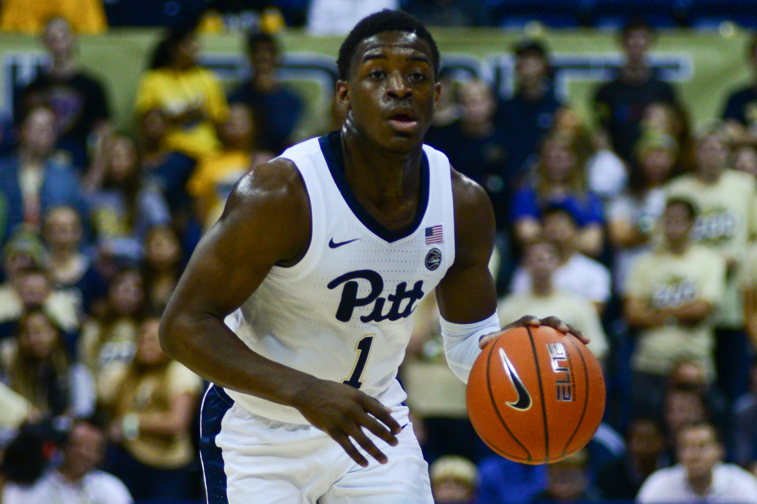 First-year guard Xavier Johnson (1) contributed 16 points in Pitt's 69-53 victory over Youngstown State Tuesday night.