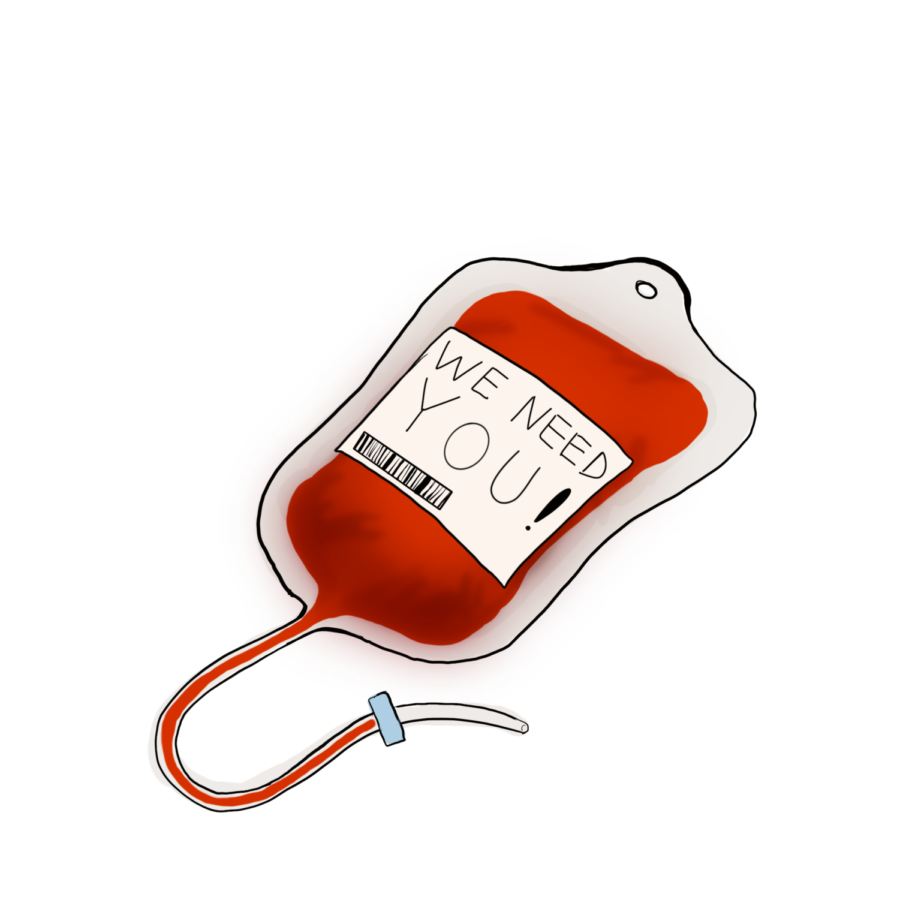 Donate blood all year round