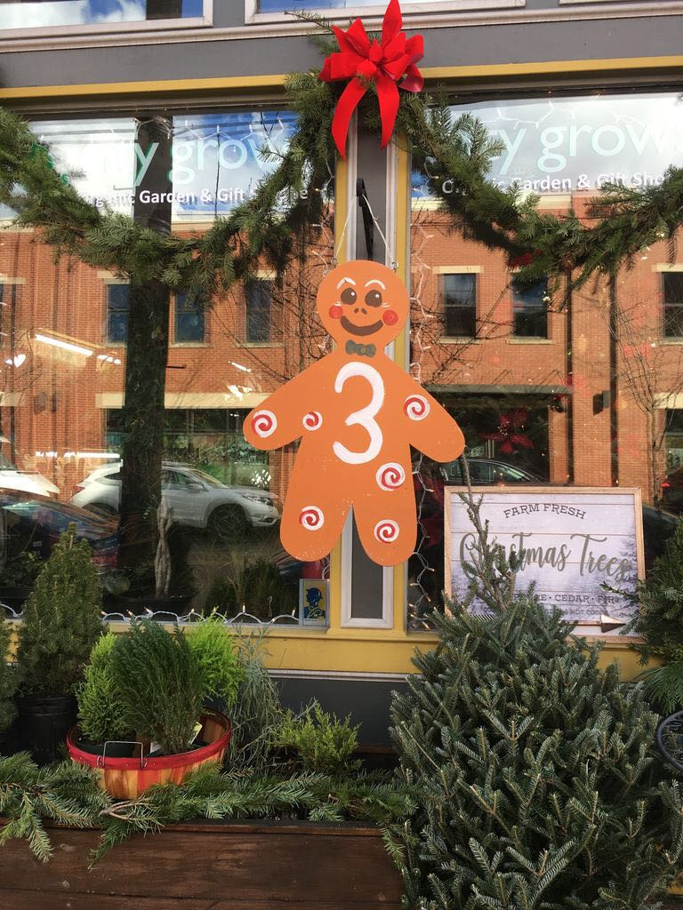 There were more than 45 stops on The Joy of Cookies: Cookie Tour 2018 in Lawrenceville this weekend.