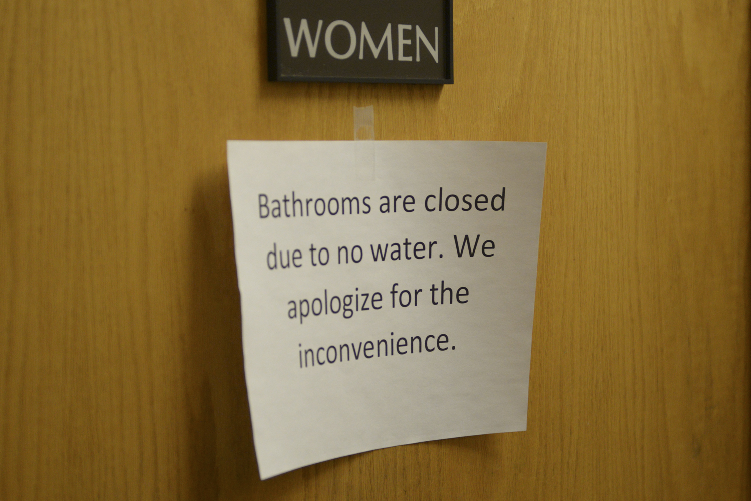 The water in the William Pitt Union is expected to be turned back on by Monday afternoon.