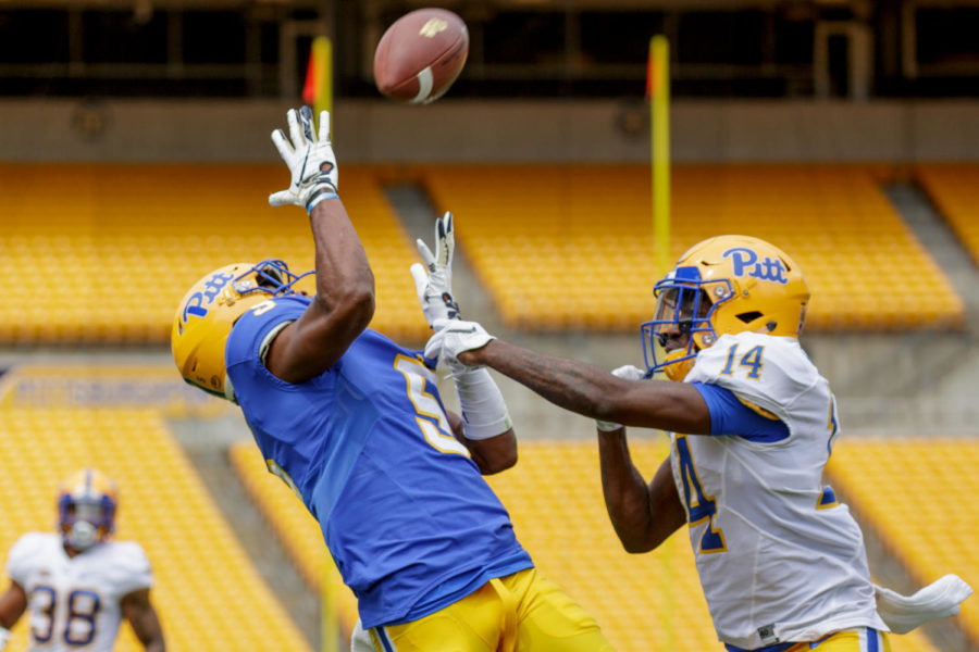 Redshirt senior Tre Tipton (5) makes his second receiving touchdown for Blue at Saturday's Blue-Gold game.