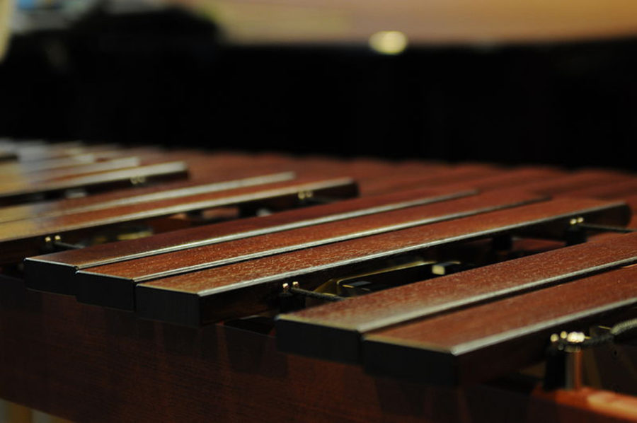 Treatment with a tempo: A look at the world of music therapy